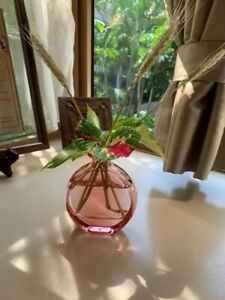 Oval Pink Clear Bottle Vase Transparent Artificial Real Flower Round Perfume Pot