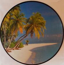 VINYL LP PICTURE Bizzl - 16 Tropical Hits  1989 Various,  NEAR MINT - PD 10 091