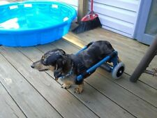 New listing Custom Dog Wheelchair/ Light Weight/ Ready Out Of Box!