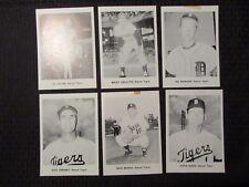 1960's 12 TIGERS Team Set of 5x7 Photos VG-/FN+ Kaline Maxwell Cottier Cash