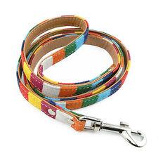 Laisse pour Chien Multicolore Taille S, Larg 15mm - Multicolored Leash Dog