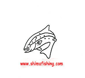 shima-fishing