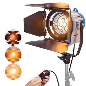 Studio Projecteur Spot 300W Fresnel Tungsten Lumière Professionnel Éclairage