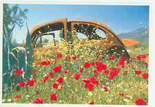 Volkswagon Beatle Retirement, Jos Prevoo 1998 (autoC#151*22
