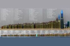 Bullet Caliber Comparison Chart Poster 24inx36in Poster