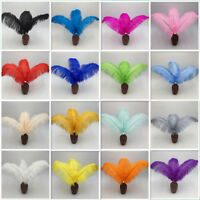 High quality ostrich feather 10pcs/50 pcs/100pcs 6-24 inches / 15-60 cm wedding