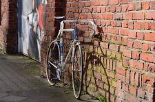 Bauwens Rennrad Klassiker 50er Jahre Eroica  RH60 Reynolds 531 Nervex Muffen