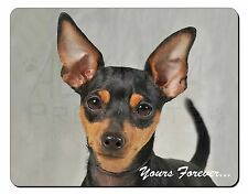 Miniature Pinscher 'Yours Forever' Computer Mouse Mat Christmas Gift I, AD-MP1yM