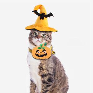 Halloween Pet Cat Bat Hat Pumpkin Collar Costumes Suit Set decoratoin