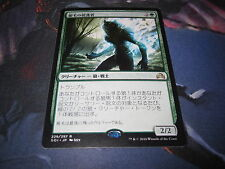 Silverfur Partisan Green Shadows Over Innistrad Rare Japanese Card Mint MTG