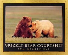Grizzly Bear Courtship Wildlife Animal Wall Decor Golden Framed Picture (18x22)