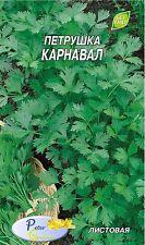 Graines de Persil plat Carnaval  - Plantes - 2700 graines