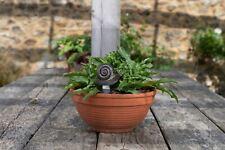More details for feeder friends snail figure plant drip feeder - handmade ornament figurine