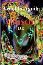 Crisol de Siglas by Arnoldo Aguila (2008, Paperback)