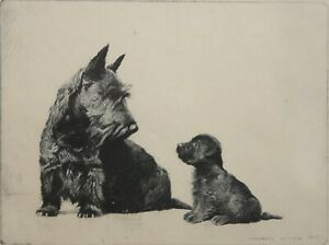 MORGAN DENNIS-MA/CA Realist-Hand Signed LIM.ED Etching-Scottish Terrier/Puppy