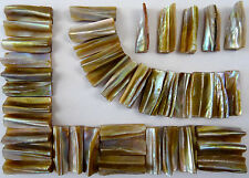 50g Natural Pearl Shell Edge Mosaic Tile 10mm x 30mm Cut Shell Tile Edge Border