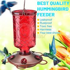 Outdoor Glass Bird Water Feeder Tree Hummingbird Hanging Wild Garden Yard Tool