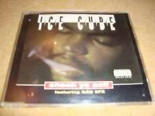 ICE Cube feat. il EFX-check Yo Self (Maxi-CD)