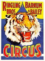 PRINT POSTER ADVERT EVENT CIRCUS BARNUM BAILEY RINGLING BROS TIGER USA NOFL1620