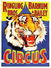 Imprimé Poster publicité événement CIRQUE BARNUM BAILEY Ringling Bros Tiger USA nofl1620
