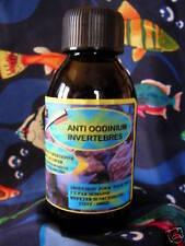 anti oodinnium invertebres traitement eau de mer