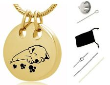 Pet cremation Urn,Memorial Cremation Jewelry,Pendant,Urn,Keepsake for Ashes,dogs
