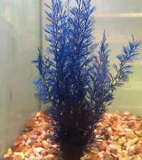 Aqurium Plant Natural Fern 7 Inch Bright Blue Decoration Leaded