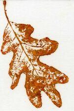 """ACEO Nature Print Art Robert Fagg """" Fall Oak"""" Leaf Print, autumn, SFA Signed"""