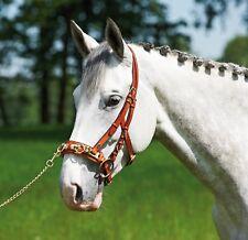 BUSSE Kappzaum Professional Solibel schwarz und hazel Pony Vollblut Warmblut