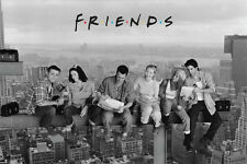 Friends Lunch on a Skyscraper poster! Hit series David Crane NBC Never Been Hung