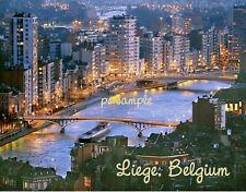 Belgium - LIEGE - Travel Souvenir Flexible Fridge Magnet