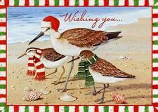 Birds with Holiday Attire 18 Beach Boxed Christmas Cards by Red Farm Studios