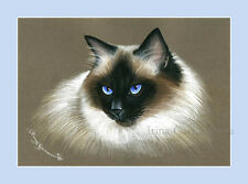 Ragdoll Cat Print Thoughful by Irina Garmashova