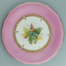 Antique Porcelain an attractive hand painted English Plate - Floral C.19thC