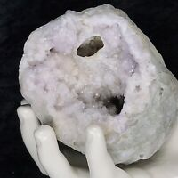 "4-1/2"" Pale Purple Lavender Amethyst Spirit Quartz Druzy Crystal Large GEODE KY"