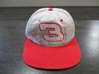 VINTAGE Nascar Hat Cap Gray Red Dale Earnhardt Racing Racer Snap Back Mens 90s