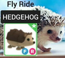 🦔HEDGEHOG👌FULLY GROWN with FLY RIDE (FR) Adopt Me Roblox. Hedge hog pet