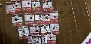 2013-14 MUSKEGON LUMBERJACKS TEAM ISSUE 21 CARD SET USHL IACOPELLI UHELSKI SGA