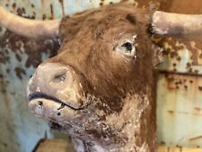 More details for antique victorian taxidermy scottish bull cow head with huge horns