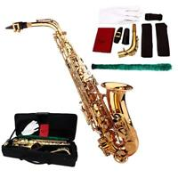 Brass Gold Alto Eb Saxophone Kit w/ Accessory, Case + Mouthpiece Gloves +Brush