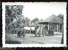 Guerre 1939-1945.camp de Chambaran. Isère. cérémonie aux couleurs. photo de 1941