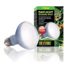 Exo Terra Daylight Basking Spot, Breitspektrum-Tageslichtlampe für Terrarien