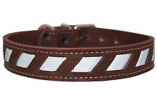 """Quality Genuine Leather Reflective Dog Collar 18""""-23"""" neck size Bull Terrier"""