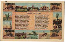 DOWN IN TEXAS POEM Multi View Armadillo TX LINEN Postcard UNUSED FREE SHIP
