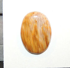 Petrified Wood Cabochon 25x18mm with 4.5mm dome (11091)