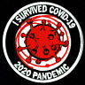 "⫸ I SURVIVED 2020 PANDEMIC Embroidered 3"" Patch Iron-On 19 Virus BIO covi toilet"