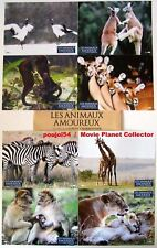 ANIMALS IN LOVE - Documentary - Set of 8 FRENCH LC