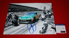 DALE EARNHARDT JR amp energy national guard sprint series signed PSA/DNA 11x14 2