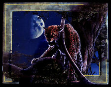 """MOONSTRUCK""  #2 Plate By Kevin Daniel Cat Lords of the Night Bradford COA/B"