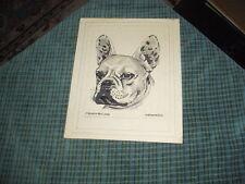 Vintage Hand Drawn Pen & Ink FRENCH BULLDOG DOG Drawing Signed: H. Blumenfeld